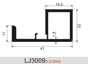 LJ3009